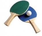 Cupa orasului Deta la tenis de masa – editia 2010