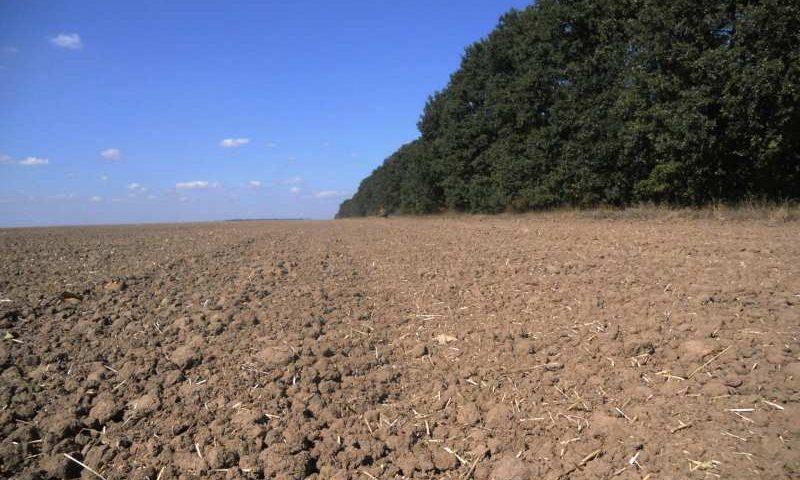 Oferta vanzare teren agricol 8.12.2014