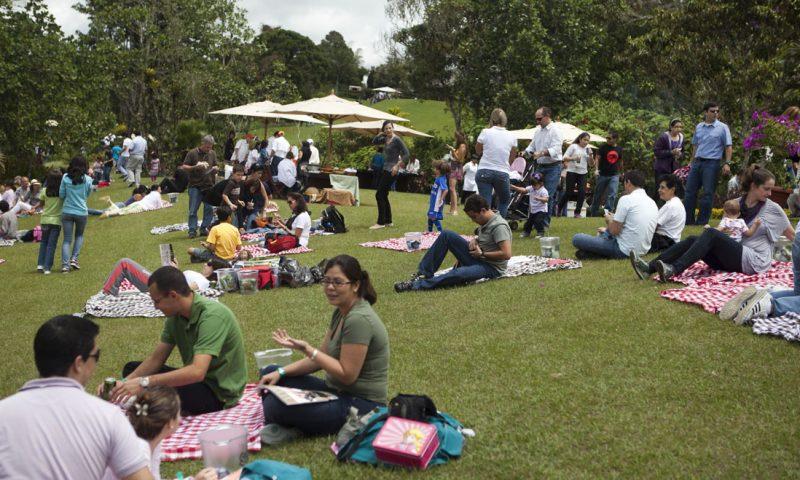 Zona special amenajata pentru picnic
