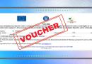 Voucher de 5000 euro pentru persoanele cu dizabilități